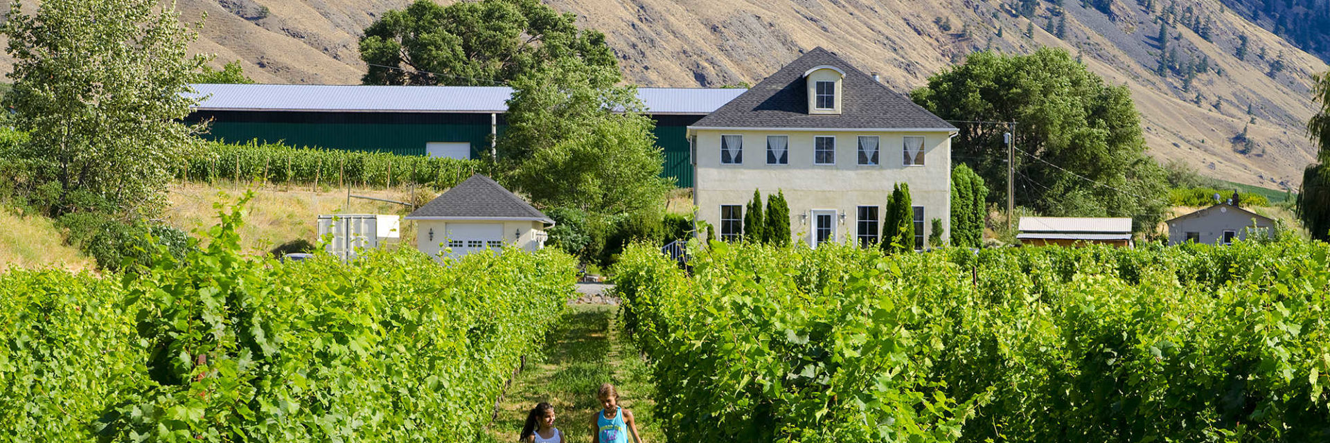Orchard and Vineyard Stays in the Similkameen