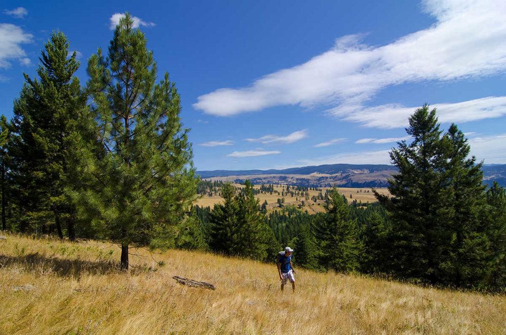 Hiking, China Ridge