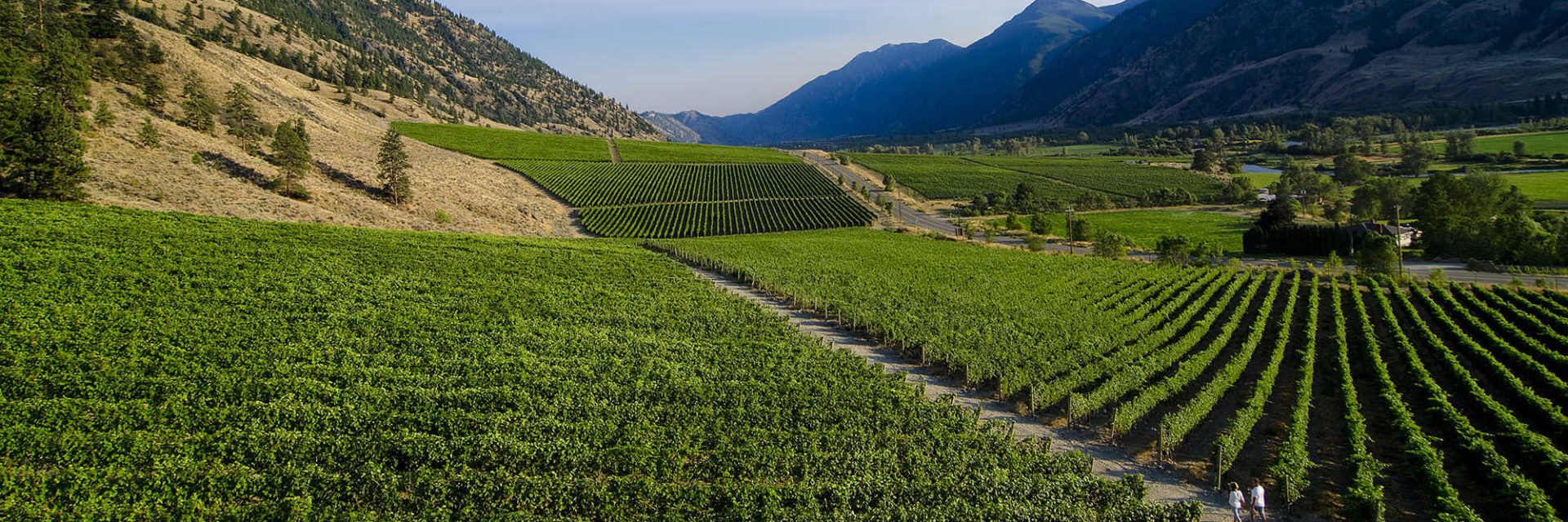 Similkameen Valley Wineries