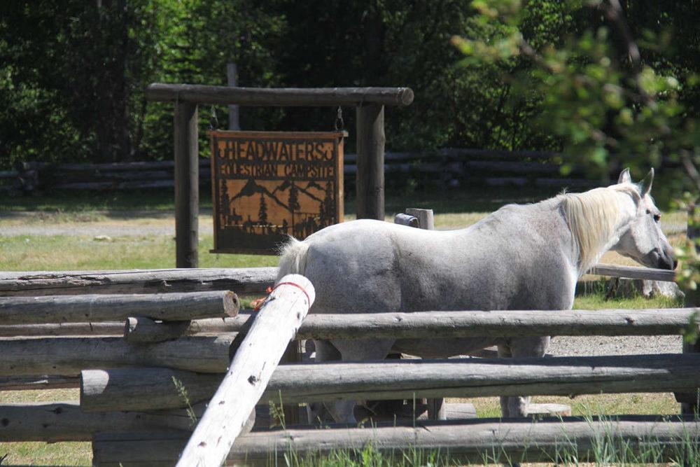 Equestrian campsite, Manning