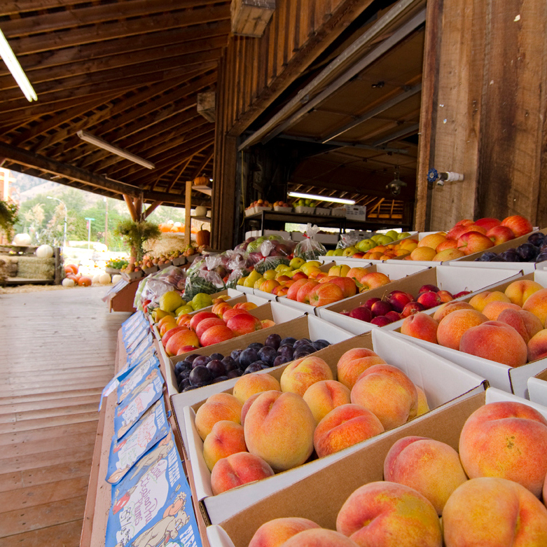 Fruit Stands / Orchards