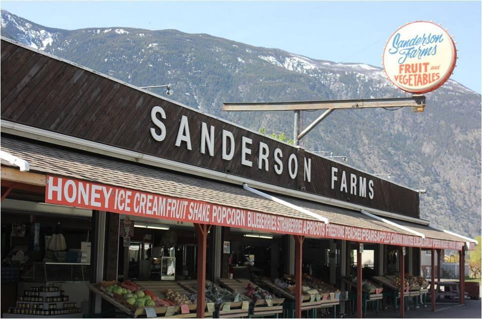 sanderson7.jpg