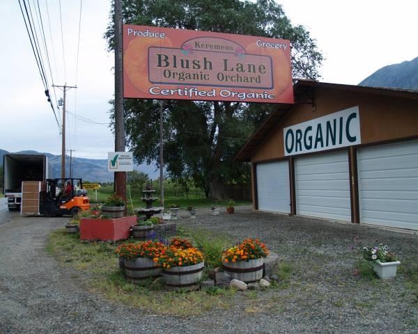 Blush Lane Organic Orchard.jpg