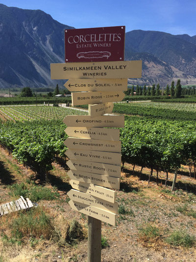 Roots_Vines_Inside_400_Valley_Sign.jpg