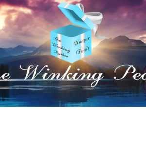 the winking pedlar FB cover.jpg
