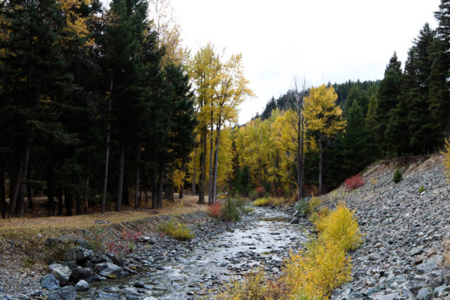 Similkameen River near Coalmont, BC