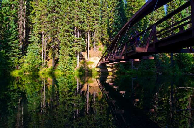 Bridge in Manning Park