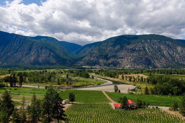Cawston, BC - winery