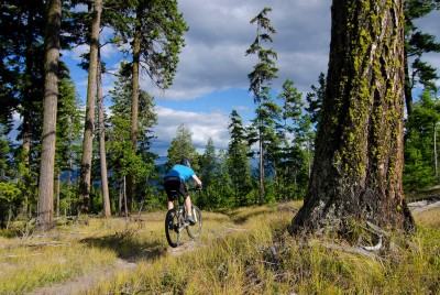 Bike the Trails at China Ridge