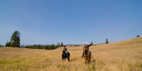 Horseback ridng in the Similkameen backcountry