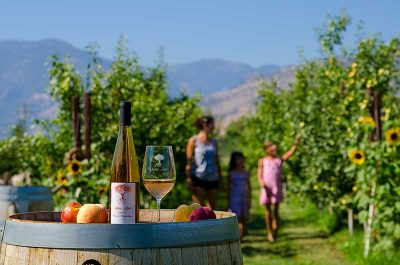 Similkameen Wineries, Wine