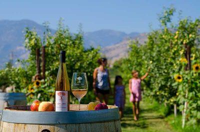 Similkameen Wineries, Wine