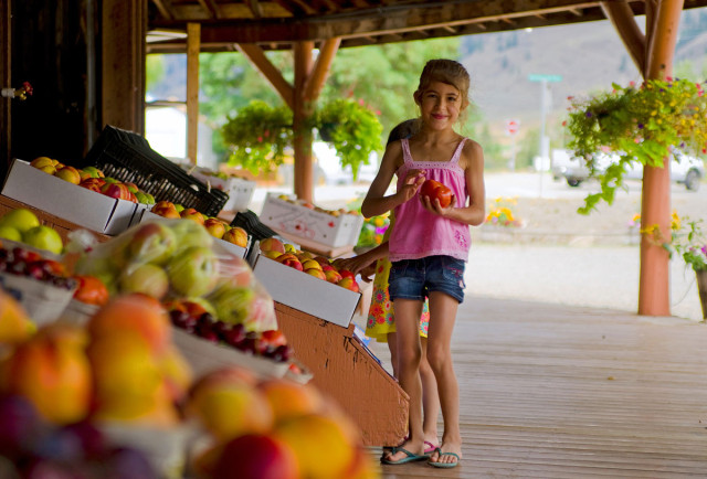 Fruit Stands & Orchards in the Similkameen