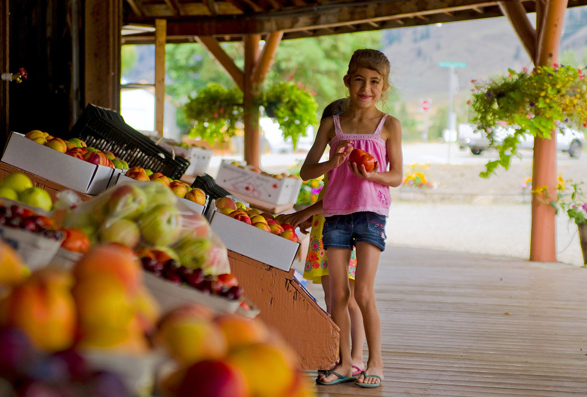 Fruit stand business plan