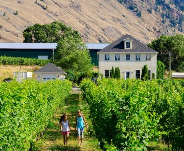 Orchard and Vineyard Stays