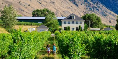 Orchards and Vineyards Stays