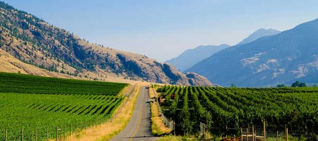 Find Our Wineries