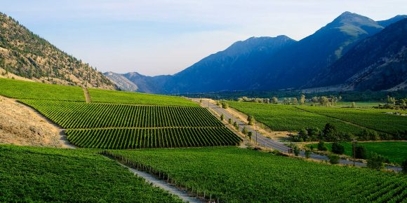 Similkameen Wineries
