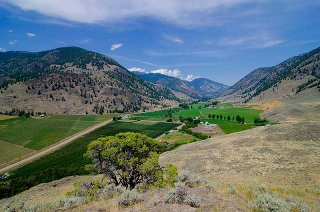 Similkameen Valley, Orchard and vineyard stays